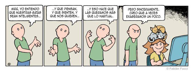 011_cabeza