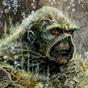 swampy1